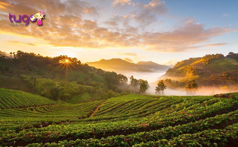Đất nước Thái Lan luôn là một điểm đến hấp dẫn với nhiều cảnh đẹp nổi tiếng