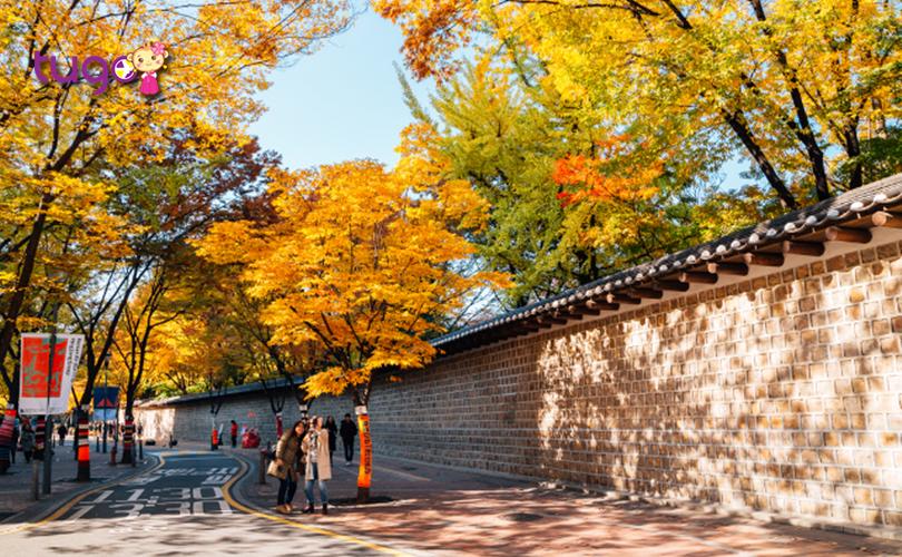 """Đoạn đường tường đá Deoksugung còn là một địa điểm """"check-in"""" cực """"hot"""" ở Hàn Quốc hiện nay"""