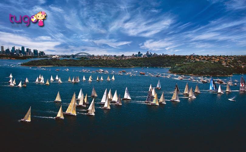 Đua thuyền buồm từ Sydney đến Hobart là một nét truyền thống độc đáo của mùa hè nước Úc