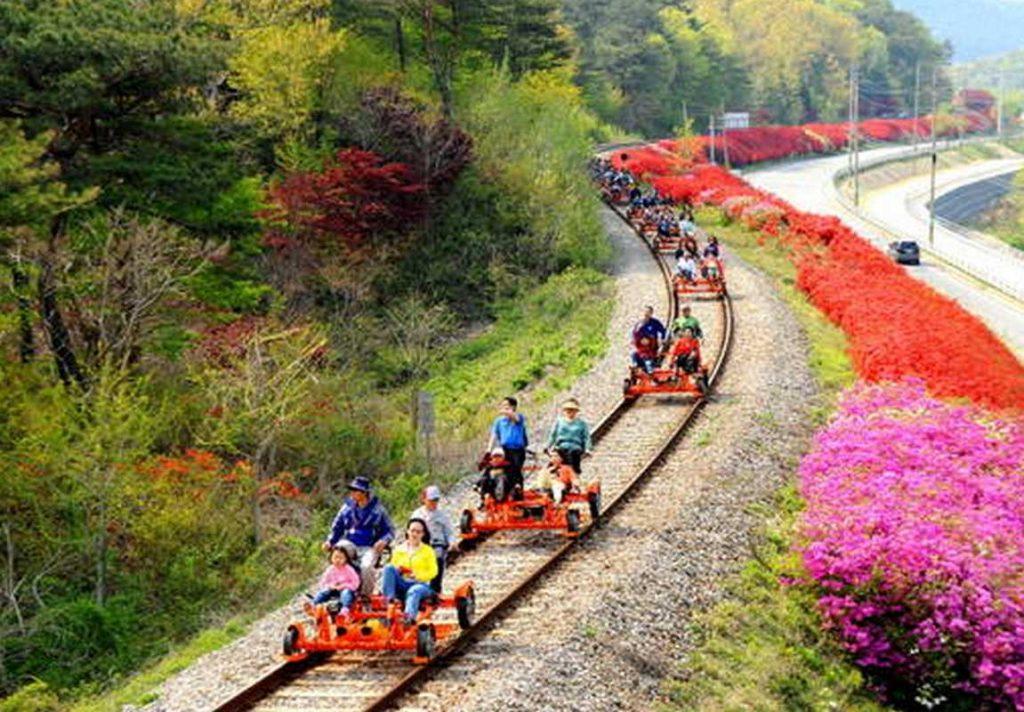 Tự đạp xe ngắm nhìn Hàn Quốc tại Gangchon Rail Park