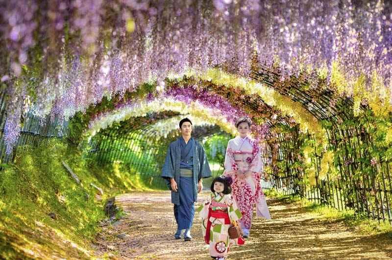 CUNG ĐƯỜNG KIM CƯƠNG : TOKYO –YAMANASHI- FUJI MOUNT – NIKKO–NARITA 5N5D (THÁNG 6)