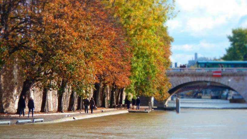1-Quais-de-Seine-Autumn