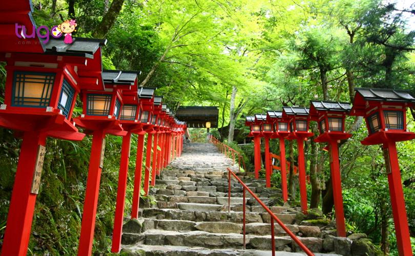 10_Những hàng cây xanh rợp bóng, che mát cả con đường đỏ rực sắc đèn lồng