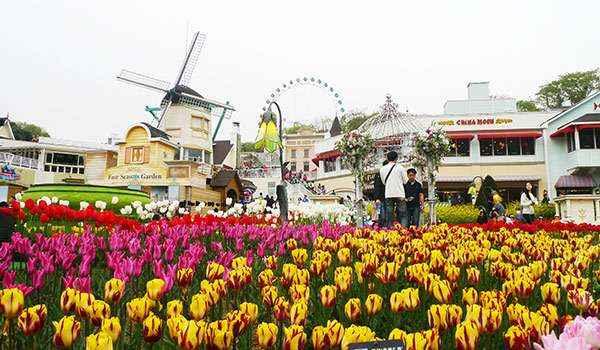 Vườn hoa bốn mùa – Rose Garden