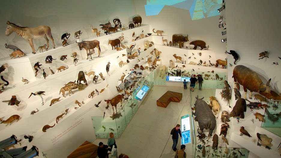 Bảo tàng Melbourne