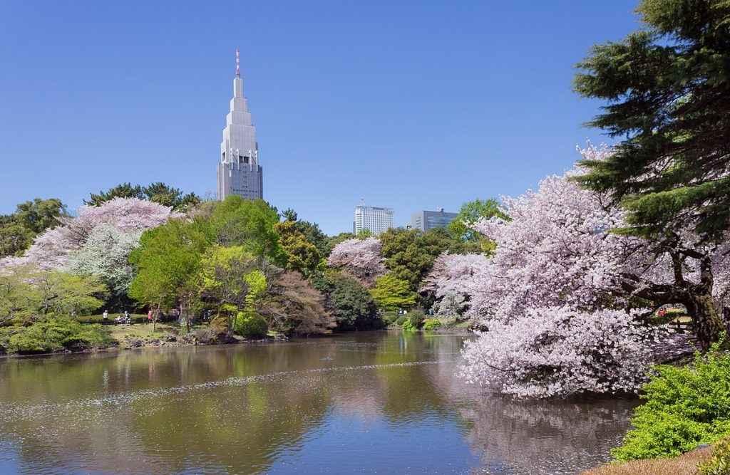 TOUR NHẬT BẢN 3N3D: TOKYO-HAKONE-FUJI–YAMANASHI-TẮM ONSEN- HÁI TRÁI CÂY (TG)