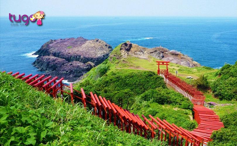 123-canh-cong-torii-xep-dai-tao-nen-mot-con-duong-ruc-lua-day-doc-dao