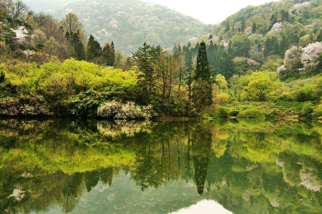 Top 25 Địa Điểm Cảnh Đẹp Hàn Quốc Đáng Du Lịch Nhất 2019