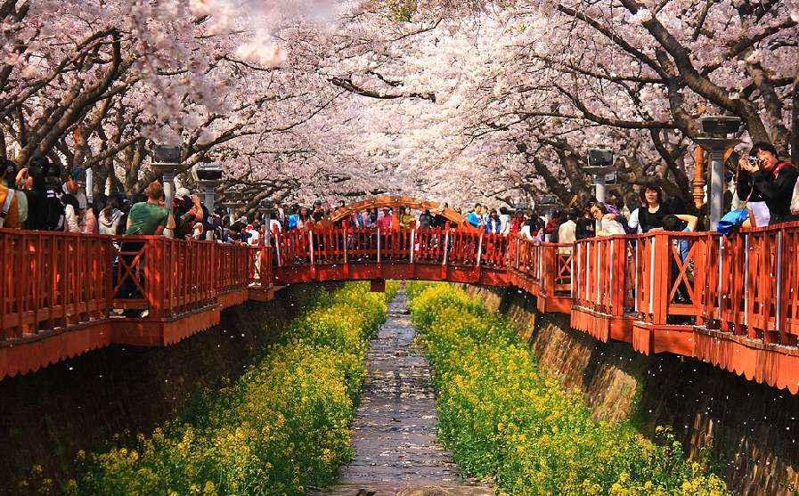 Con sông nằm ở trung tâm của Jinhae