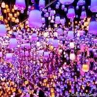TOUR NHẬT BẢN 4N3Đ : TOKYO –NARITA –HAKONE- FUJISAN