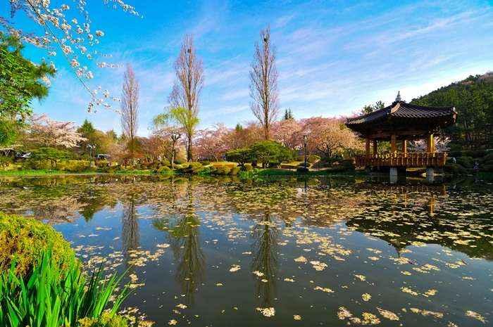 Vọng lâu Bomun vào mùa thu với những hàng cây xanh và bầu không khí thoáng đãng