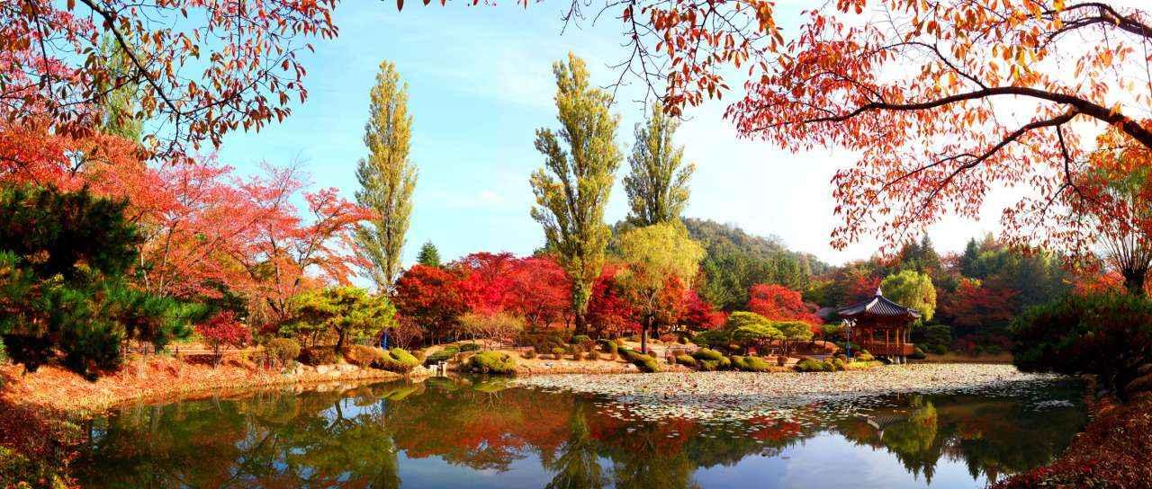 Cảnh tượng mùa thu đầy xao xuyến