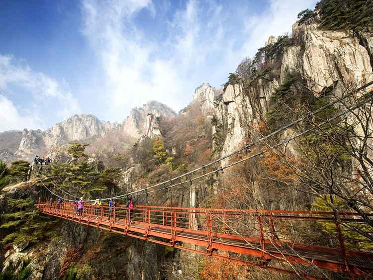 Vẻ đẹp mùa thu rực rỡ tại cầu treo núi Daedun