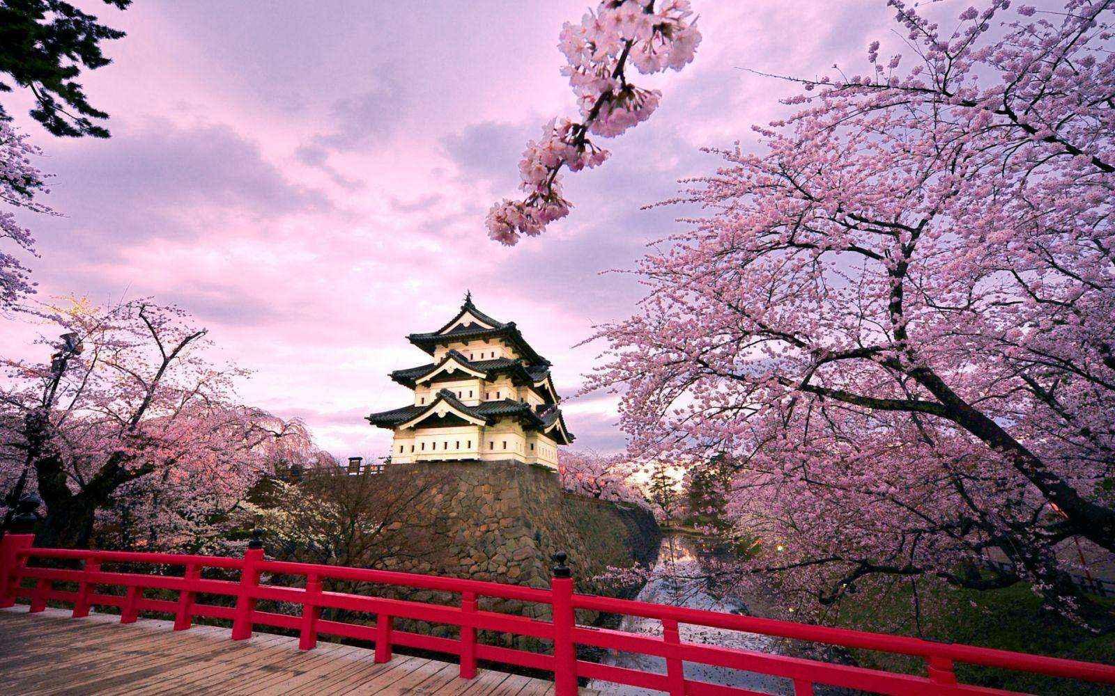 Hàn Quốc - nơi để bạn khám phá nền văn hóa lâu đời