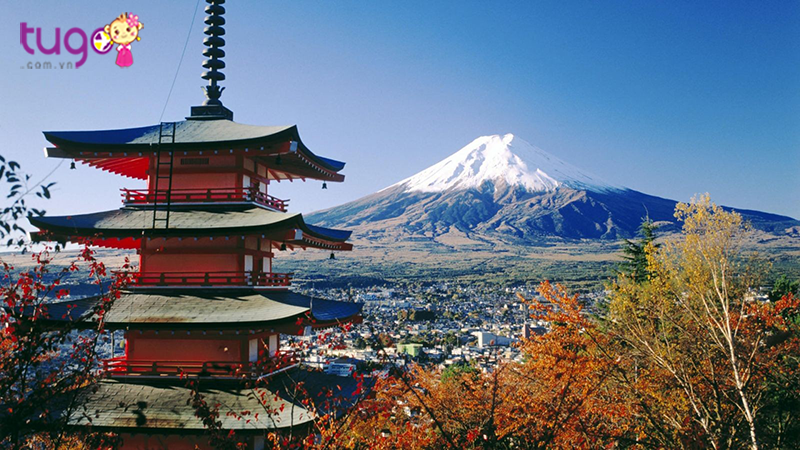 4 Điều thú vị chỉ có ở Nhật Bản mùa hè này dành cho bạn và gia đình
