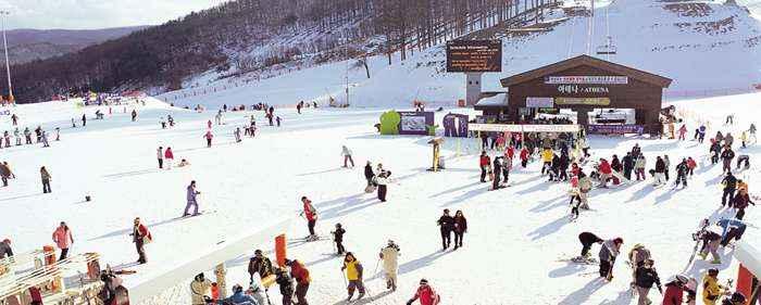 Trượt tuyết tại Gangwon