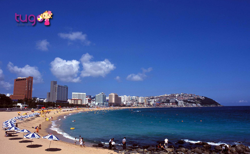 bo-bien-dai-va-rong-cua-haeundae-beach