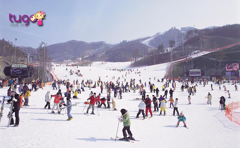 Công viên Everland chính là lựa chọn hàng đầu cho các chuyến du lịch Hàn Quốc mùa đông