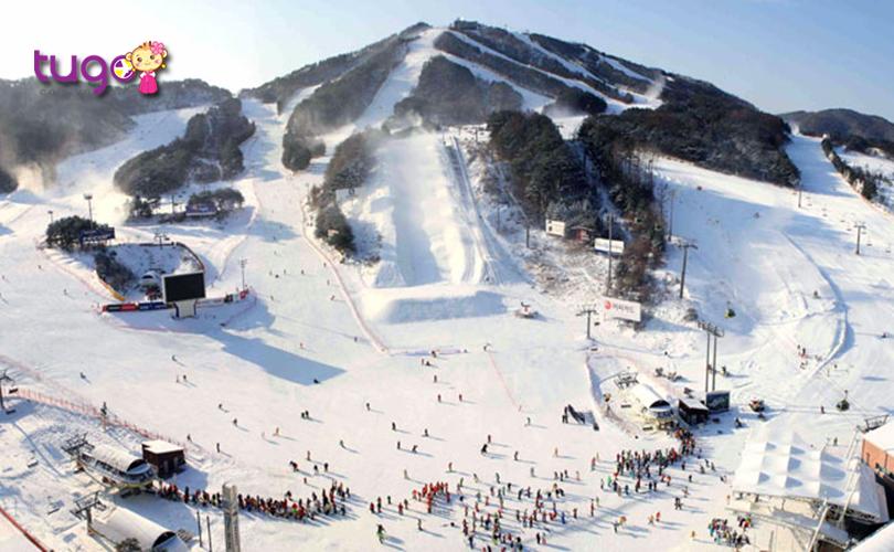 Công viên tuyết Welli Hilli thu hút đông đảo người tham gia mỗi năm