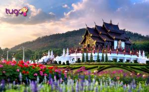 Chiang Mai là điểm đến nổi tiếng ở Thái Lan và được nhiều du khách ghé thăm trong thời gian gần đây