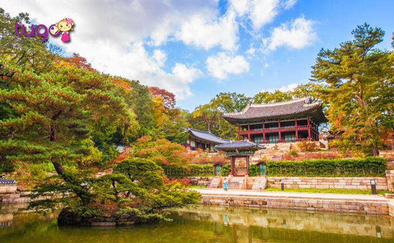 Cung điện Changdeokgung là một trong những điểm đến hấp dẫn mà du khách không nên bỏ lỡ trong chuyến du lịch Hàn Quốc tháng 11