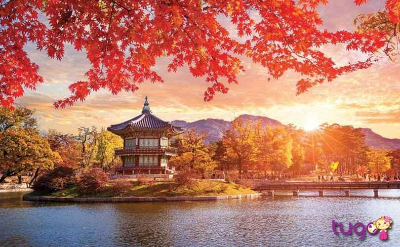 Cẩm nang đi du lịch Hàn Quốc: Tổng hợp thời tiết khí hậu 4 mùa