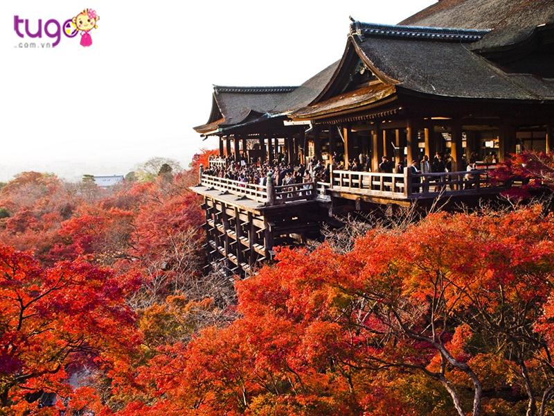 Nhật Bản xinh đẹp và độc đáo xứng đáng nên đi du lịch ngay và luôn