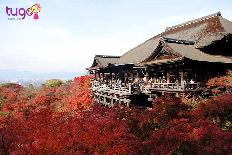 Địa điểm lý tưởng để ngắm bạt ngàn hoa và toàn cảnh Kyoto
