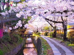 Con đường Philisopher's Path xinh đẹp và nên thơ