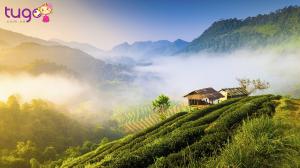 Chiang Mai được mệnh danh là đóa hồng Phương Bắc của Thái Lan
