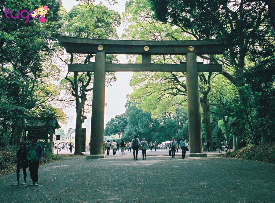 Một góc công viên Yoyogi