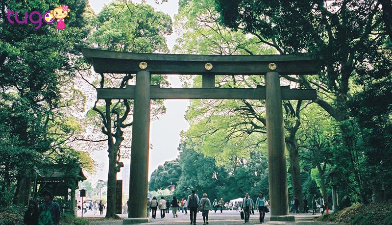 Gợi ý lịch trình du lịch trải nghiệm mùa hè Nhật Bản cho người bận rộn