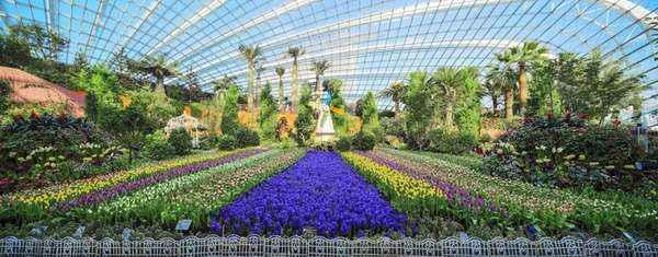 Du khách phải mất hàng giờ mới có thể chiêm ngưỡng hết vẻ đẹp những loại hoa miền ôn đới trong hai khu nhà kính Vòm hoa và Rừng mây.