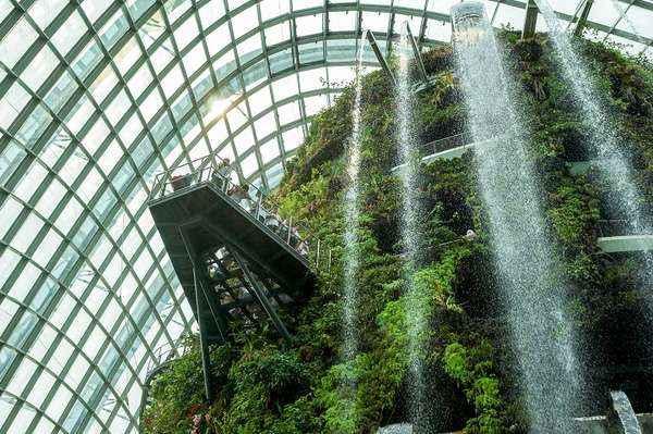 Gardens by the Bay được xây dựng với mục đích đem màu xanh thiên nhiên đến với đô thị hiện đại