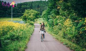 Những con đường xanh mướt, trong veo và thanh bình ở thị trấn Higashikawa
