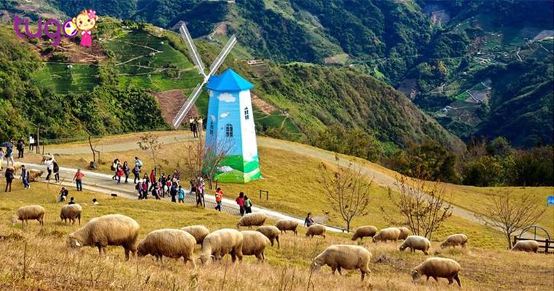 Nông trường Wuling là một trong 3 nông trường trên núi lớn nhất Đài Loan