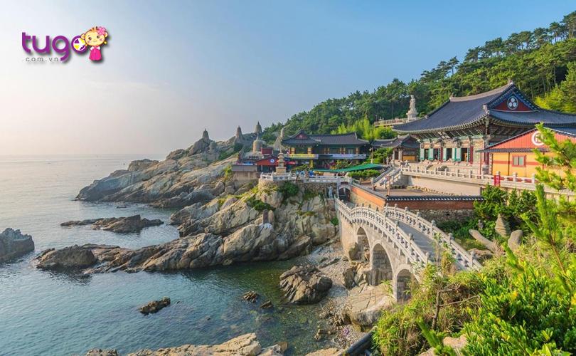Không chỉ có một nét đẹp hiện đại, Busan còn rất thơ mộng với nhiều khung cảnh thiên nhiên tươi đẹp