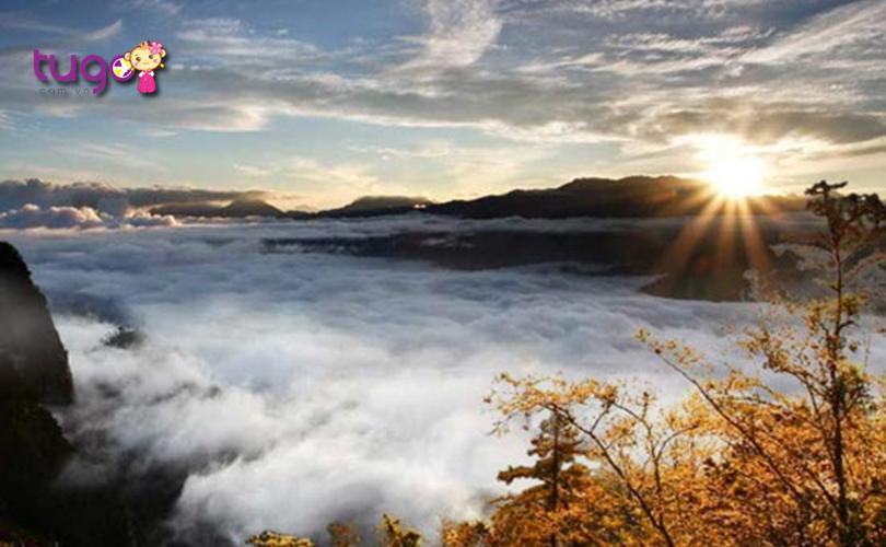 Khung cảnh tựa chốn thần tiên tại khu vực núi Núi Alishan