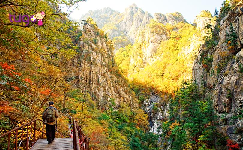 Khung cảnh thiên nhiên tuyệt đẹp tại vườn quốc gia Seoraksan