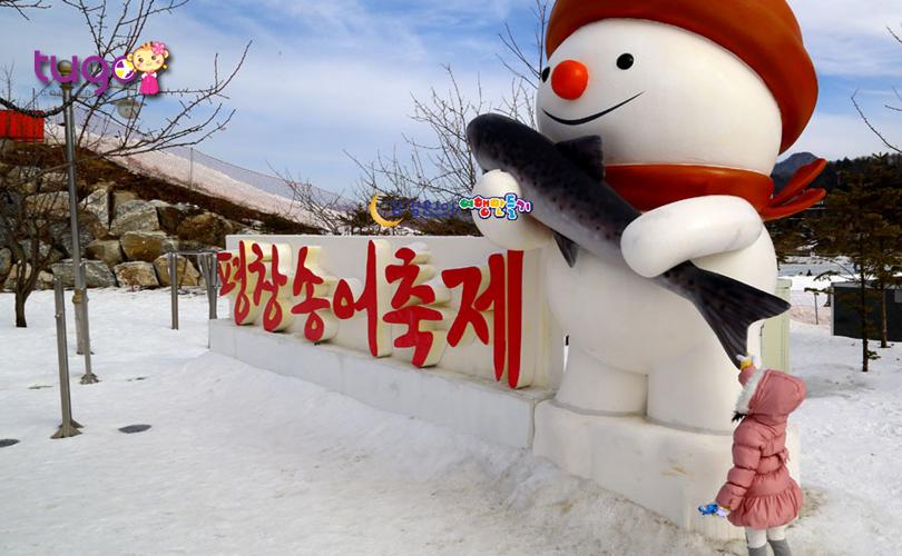 Lễ hội cá hồi Pyeongchang là một trong những sự kiện mùa đông hấp dẫn nhất tại Hàn Quốc