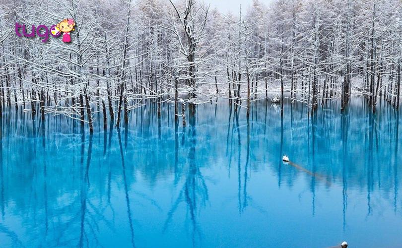 Màu nước xanh độc đáo ở hồ Biei, Hokkaido