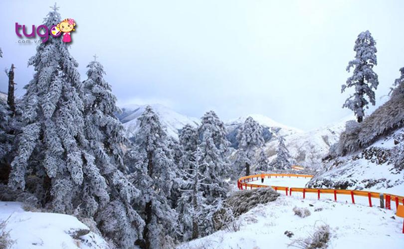 Mùa đông ở Đài Loan là một khoảng thời gian đặc biệt với nhiều cảnh sắc tuyệt đẹp