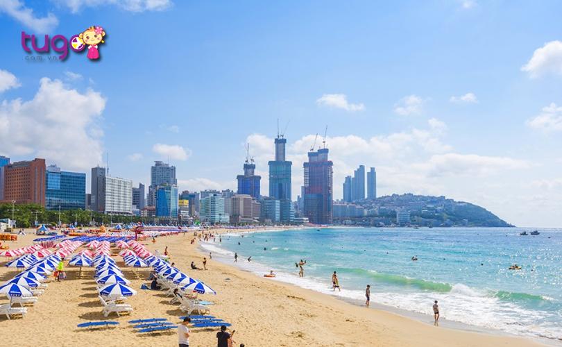 Mùa hè ở Busan là thời điểm lý tưởng cho các hoạt động biển