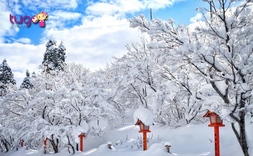 Một màu trắng xóa của tuyết bao phủ khắp nơi ở Nhật Bản vào mùa đông