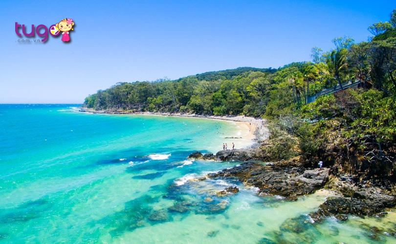Nét đẹp yên bình, hoang dã và cực kì thu hút ở Noosa, Queensland