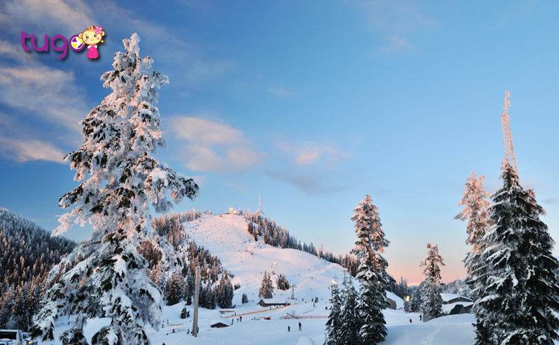 Núi Grouse - Một trong những điểm đến mùa đông lý tưởng nhất ở Canada