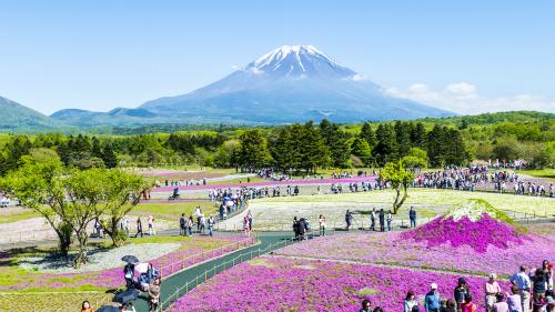 Kinh nghiệm du lịch Nhật Bản tugo.com.vn