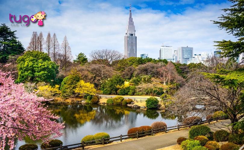 Ngoài vẻ đẹp hấp dẫn, vườn quốc gia Shinjuku Gyoen còn là một địa điểm đã ngoại rất tuyệt vời