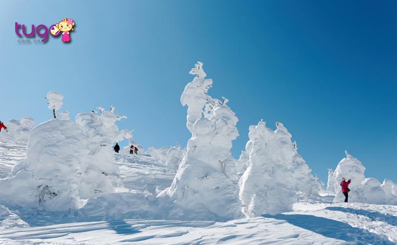 """Những """"quái vật tuyết"""" khổng lồ tại cánh rừng tuyết Juhyo"""