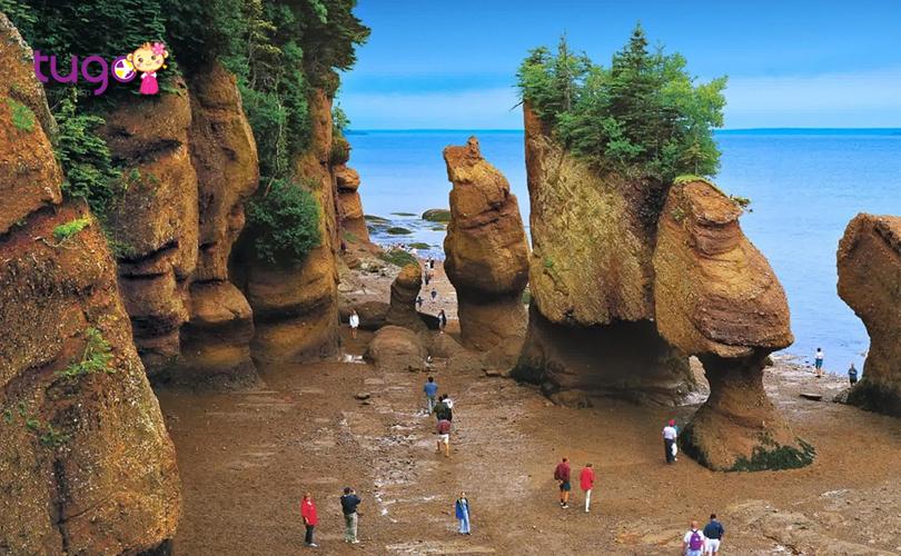 """Những vách đá Hopewell ở vịnh Fundy - Một trong những """"tuyệt tác"""" của tự nhiên mà du khách không nên bỏ lỡ"""